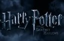 Swamp Entertainments working for Harry Potter movie release